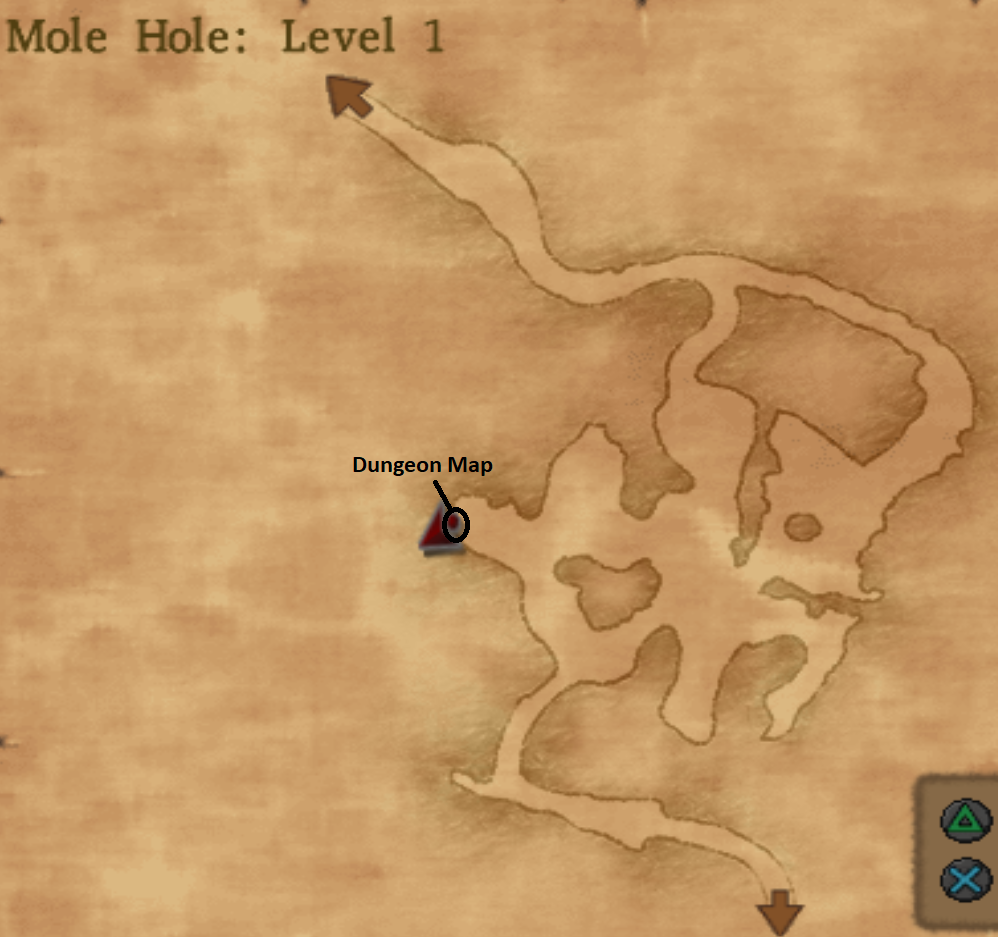 Mole Hole Level 1